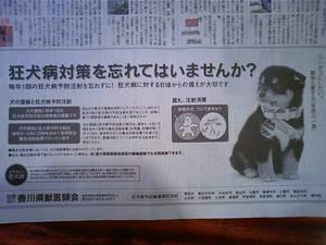 狂犬病広告