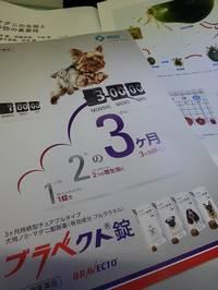 ノミ・マダニ予防薬